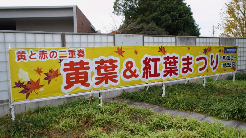 20121124_000.jpg