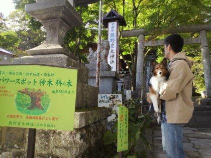 熊野皇大社にて。ヤマトタケルと八咫烏で有名な神社なんでつ。