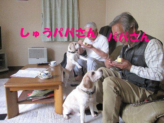 2012・05・01しゅう太君宅1