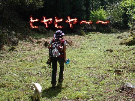 2012・04・29東床尾山9