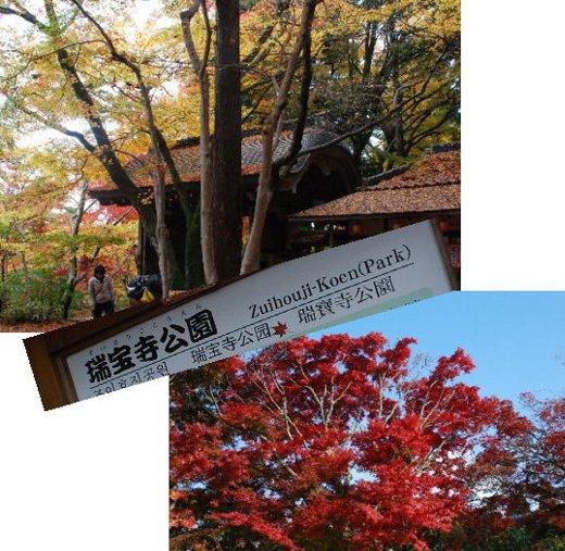 2012・11・18瑞宝寺1