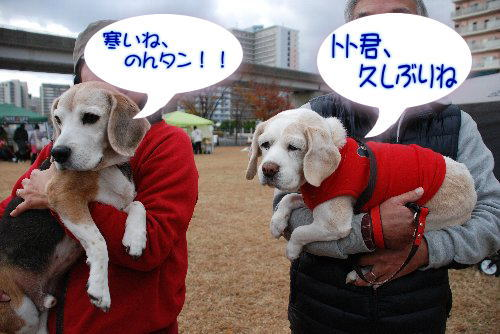 2012・12・01アイランド2