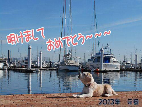 2013・01・01賀状