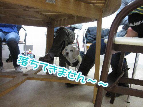 2013・12・14吹田カフェ1