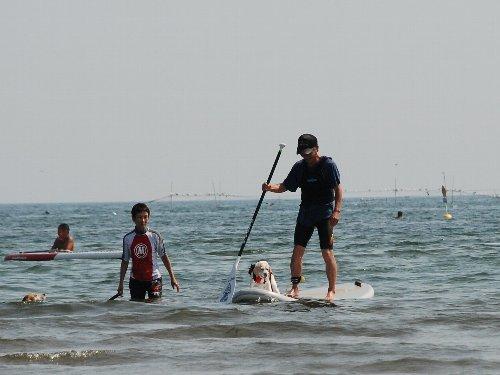 2013・08・14白浜海岸8