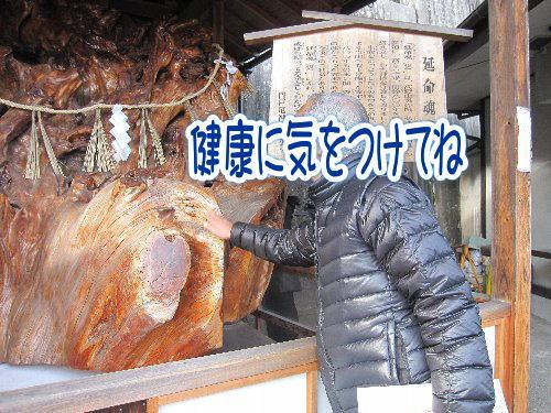 2014・01・12厄神さん2