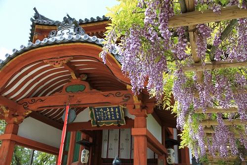奈良でのんびり