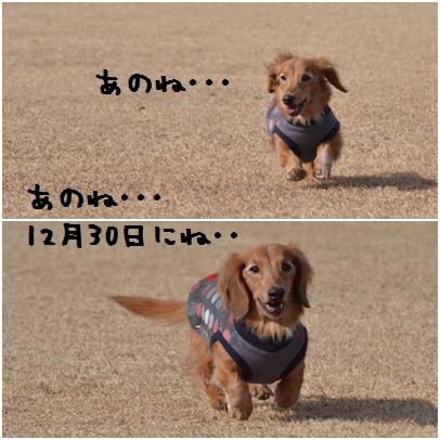 1_20130120191556.jpg