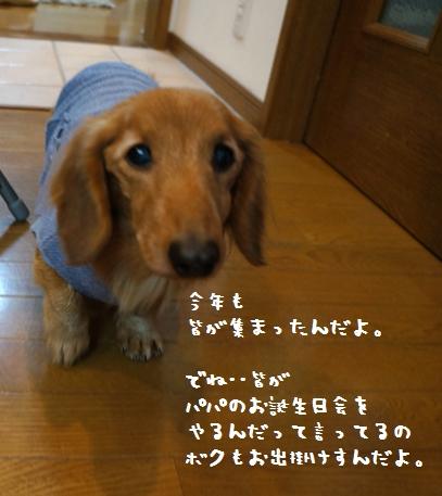 6_20130326135944.jpg