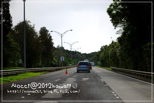 DSC_5779.jpg