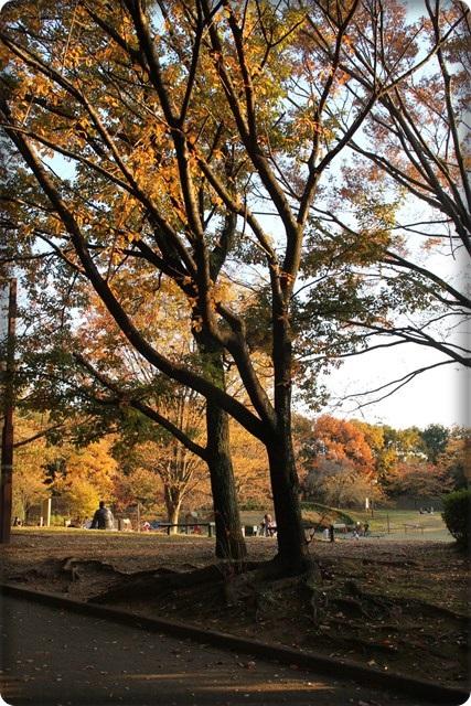 秋の足あと1
