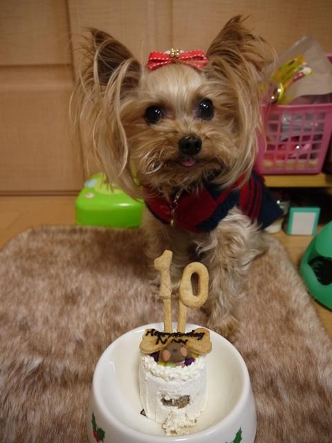 10歳おめでとう