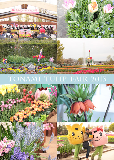 tulip fair-2