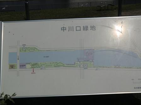 中川緑地1