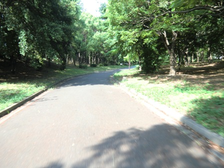 稲永公園2