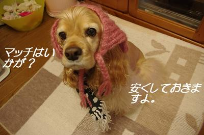 s-冬のアピィ3