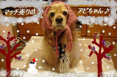 s-冬のアピィ1