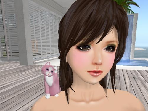 Snapshot_037_convert_20120731010926.png
