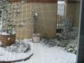 ナンフェア 2014 大雪