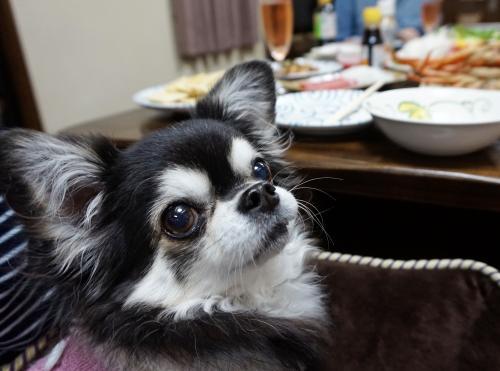 夕食はうまうま~~♪