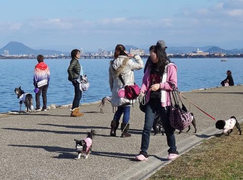 琵琶湖散策