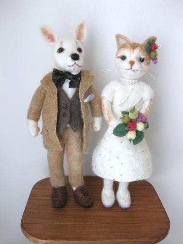 wedding dog & cat