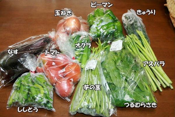 100円お野菜
