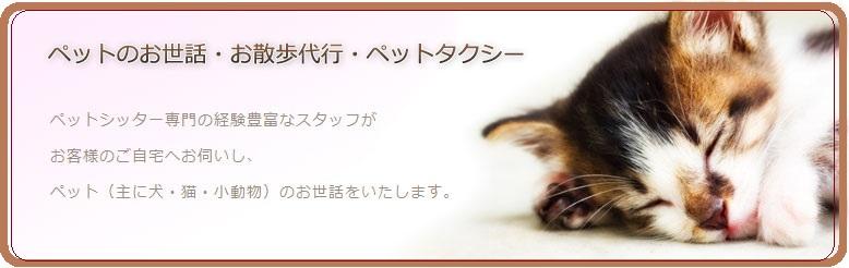 top_main_img-2.jpg
