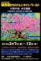 2014日比谷ハガキ原稿写真面ー本番(さくら)_001(1) - コピー