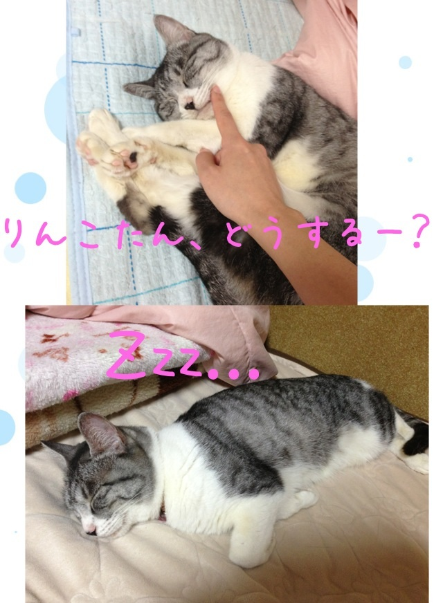 image_20130606224513.jpg