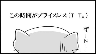 212.jpg