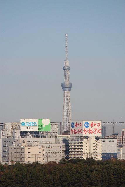 20121203-135.jpg