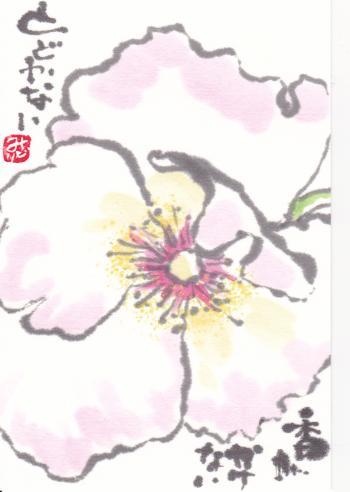 鬮俶ゥ倶クダconvert_20130529092705
