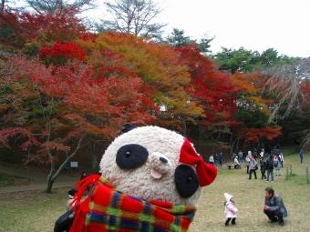 ばぶちゃん修善寺自然公園にて