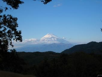 修善寺自然公園からの富士山