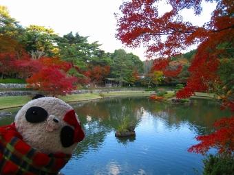 ばぶちゃん虹の郷の日本庭園にて