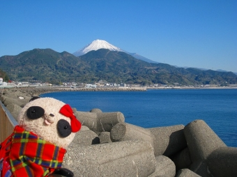 ばぶちゃん由比PAからの富士山