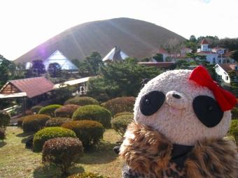 大室山とシャボテン公園