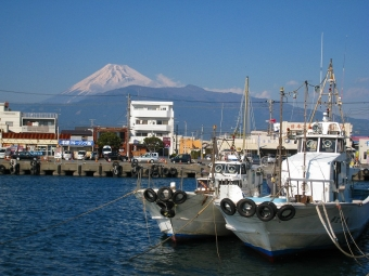 沼津港からの富士山