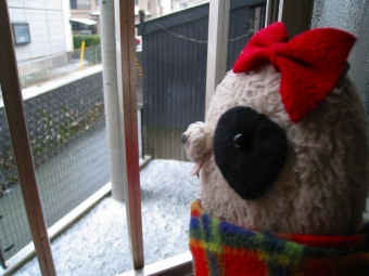 おばぶ窓の外は雪