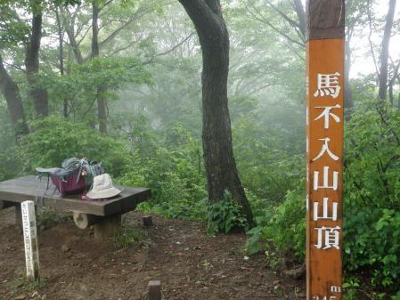 120617岩舟山~大平山 (18)30