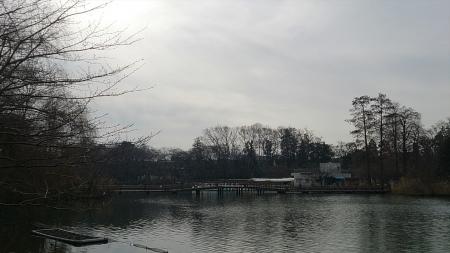 140104井の頭公園 (5)s