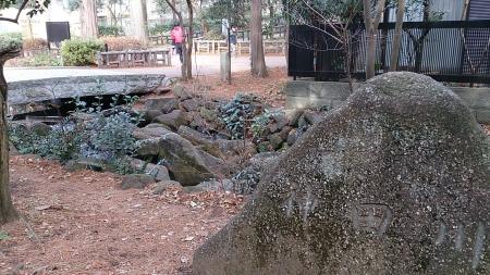 140104井の頭公園 (22)s
