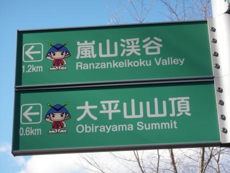 140119大平山(嵐山町) (2)s