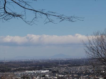 140119大平山(嵐山町) (3)s