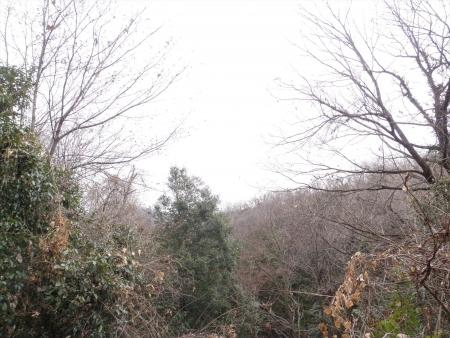 140125上城山 (3)s