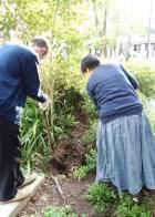 植物レスキュー隊-2_convert_20130413063441