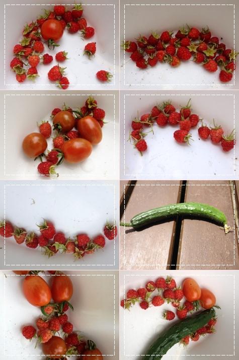 6月30日収穫