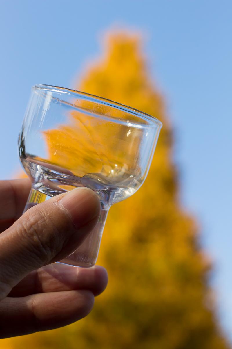 黄葉見酒まつり(7)