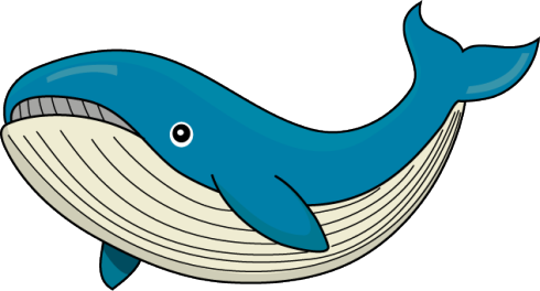 whale_a01.png